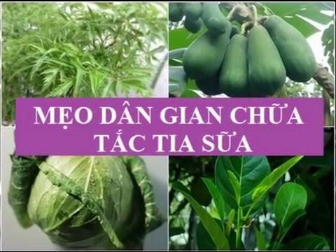 meo-dan-gian-giup-thong-tac-sua